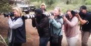 28 photographers, 0 tripods!