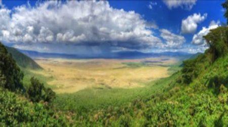12-Day Grand Wildlife Safari Tanzania, East Africa (3)