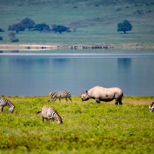 Ngorongoro-Crater.jpg